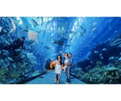 VR Park and Dubai Aquarium Tickets