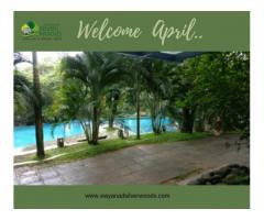 Honeymoon Resort in Wayanad