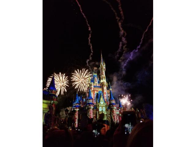 Family Trip to Disneyland!