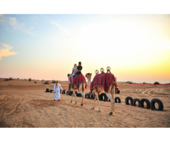 Desert Safari, City Tours, and Water Adventures in the UAE