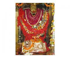 Vindhyachal Mata Darshan