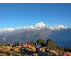 Short Annapurna Trekking