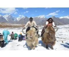 Summer Manali Volvo Package - Honeymoon Special 5Days/4Nights